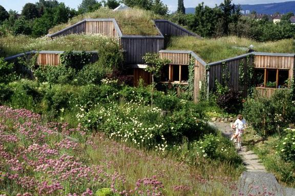 casa de Minke; Es una verdadera casita Hobbit