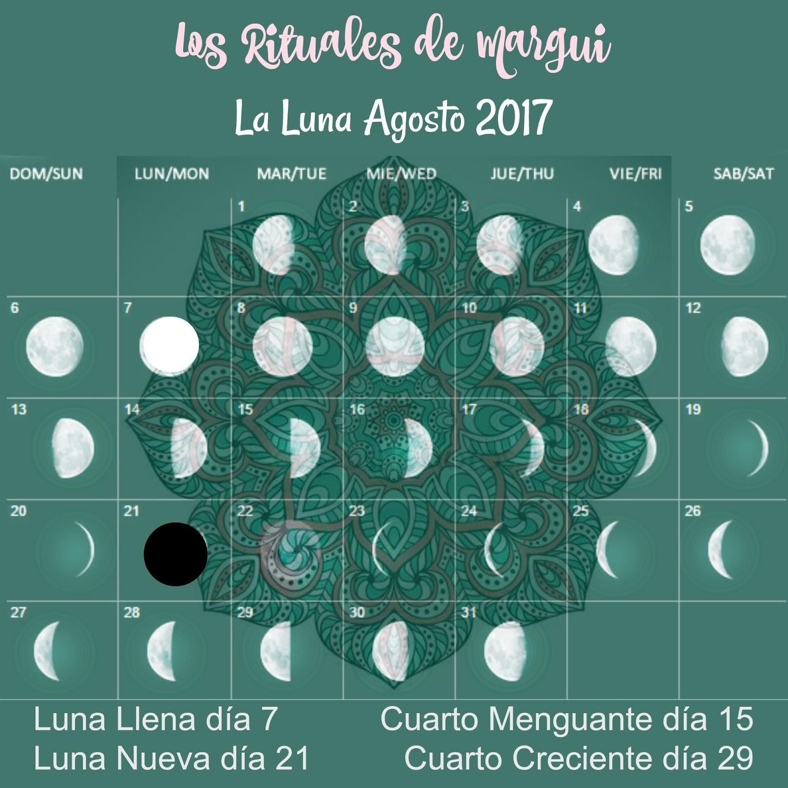 Siembra en esta Luna menguante de Agosto… | Nace una semilla